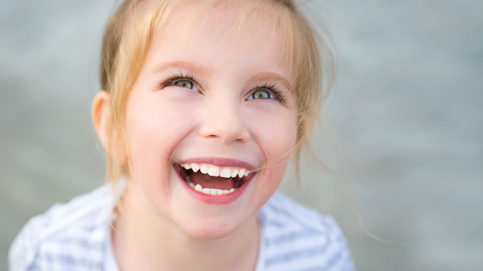 oralprima seguros